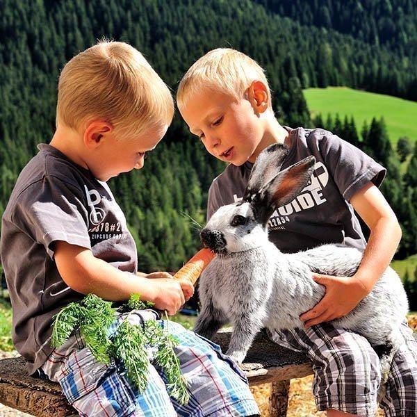 Bauernhofurlaub in den Dolomiten